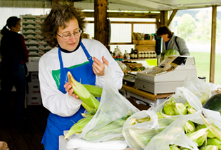 lady packing corn in bags at outdoor market